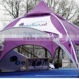 Assembly New Type Hexagonal Tent/ Dome Tent/ Outdoor Advertising Gazebo