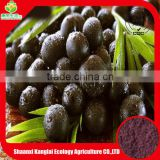 Factory Supply Acai Berry Powder/Acai Berry P.E. with Good Quality and Competitive Price