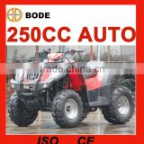 New 250cc <b>utility</b> farm <b>atv</b>(MC-356)