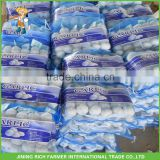 Fresh Vegetables Wholesale Import China Cold Storage Garlic