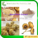 Sex Products High Quality Maca Extract Powder/Maca Extract 10:1, 20:1, Maca Gelatinized Powder