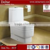 Sanitaryware square ceramic siphonic toilet, one piece toilet with 100mm and P trap, color toilet manufacturer