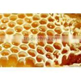 100% Natural Water Solubility Bee Propolis Extract Powder / 70% Propolis / 10% Flavonoids