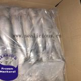 Frozen Mackerel Scomber 300-500g