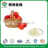 Lyophilized Green Apple Fruit Powder for Soft Drink Additives