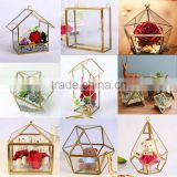 More in Stock!!!! Geometric Glass Pot, Succulent Terrarium, Air Plant Planter glass terrarium