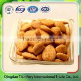 Sweet alibaba China supplier apricot kernels