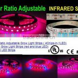 new arrival UL Listed Grow light strip, Factory selling, color ratio adjustable , 4 chip in 1 LED