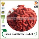goji berry plants-health