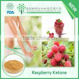 High Purity 99% Natural Raspberry Ketone made in china CAS#: 5471-51-2