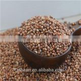 Natural Glutinous Red Sorghum price