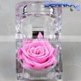 Wholesale Luxuious Preserved Eternal Peach Rose Ecuadorian 100% Fresh Natural Real Flower Gift Box