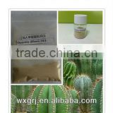 Top Quality Weight Loss Hoodia Cactus/Opuntia dillenii Haw/Caralluma Fimbriata Extract