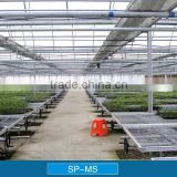 Greenhouse Seedbed Benches