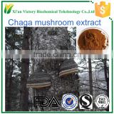 ISO certification food grade manufacture supply 100% natural chaga extract