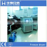 Lab standard freeze dryer for sale