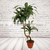 Home Decorative Artificial Bonsai Tree For Sale