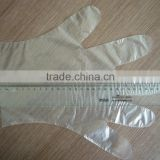 Food Grade PE Disposable Gloves, Clear Transparent Glove For Fast Food