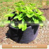 Green Field durable high quality felt root tree planting bag ,felt fabric nursery grow bag