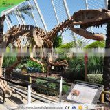 KAWAH Museum Quality Life-Size Realistic Dinosaur Skull For Sale