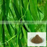 100% Natural White Willow Bark Extract Salicin