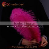 2016 wholesale white ostrich feather 14-16inch for sale