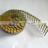 15 degree Wire Coil Galvanized Roofing Nails, pallet screw nails, coil roofing nails