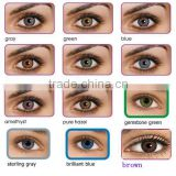 Inquiry about wholesale Freshlook 3-tone color contact lenses 12 colors