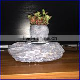 Levitation jade bonsai pottery with indoor plants