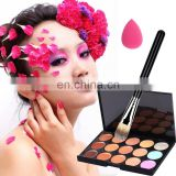 Professional 15 Color Concealer makeup foundation palette
