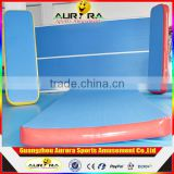 Factory Hot Sale Inflatable Air Track Inflatable Race Track For Air Track Gymnastic Mats For Sale