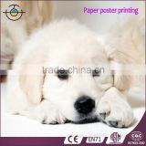 Poster Printing In Hign Resolution With Full Color At Cheap Price Made In China                                                                         Quality Choice