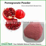 Organic Pomegranate Powder Freeze Dried with Good Pomegrate Fruit Powder Taste and Flavor