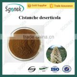 Cistanche Deserticola,Caulis Cistanchis Extract,Cistanche tubulosa Extract