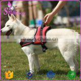 Soft Padded Adjustable Pet Harness Breathable Dog Vest Adjustable Nylon Collar Sport Working Pet Trainning