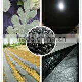 Agricultural ldpe/lldpe mulching film/green house film masterbatch for any thickness film high bright carbon black master batch