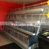 INquiry about Kenya Nairobi Warehouse 120 160 and 256 birds Chicken Layer Cage