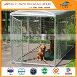 outdoor boxed black powder-coated welded dog kennels