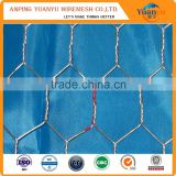 supply galvanized or pvc coated hexagonal wire mesh/hexagonal wire netting/chicken mesh with best