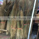 Grass broom raw material season 2017