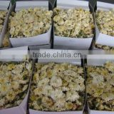 Organic Chrysanthemum tea - 40grams packing