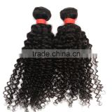 Malaysian kinky curly hair, unprocessed virgin kinky curly hair, wholesale Malaysian kinky curly virgin hair