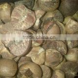 INquiry about Betel Nuts / Supari from Indonesia. Good price and quality