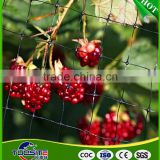 grapes farming plants protection covers mesh anti bird guard net