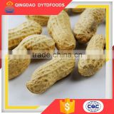 Best Selling Products Peanut In Shell Organic Roasted Groundnut Peanuts High Demand Export Products