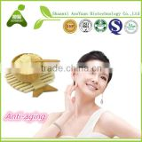 Chinese Organic Pure Lotus Bee Pollen Powder In China
