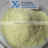 Natural Piper methysticum Extract/Kava Kava Root Extract/Kava root Extract Powder