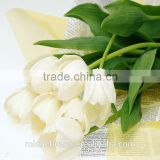 chinese supply natural beautiful petals white tulip flower for home garden decoration