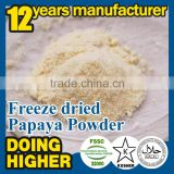 100% natural High quality factory supply papaya powder in Dried Fruit