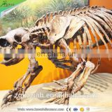 KAWAH Museum Display Resin Dinosaur Skeleton Life-Size Real Fiberglass Dino Skull For Sale